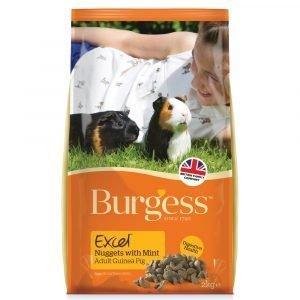 Burgess Excel Adult Guinea Pig 2kg