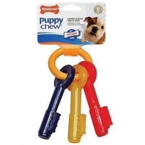 Nylabone Puppy Teeth Keys Small