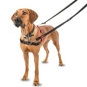 Halti Front Control Harness Large