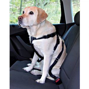 Car Harness Extra Large 80-110cm