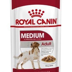 ROYAL CANIN? Medium Adult in Gravy Wet Dog Food