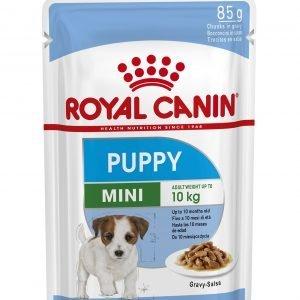 ROYAL CANIN? Mini Puppy in Gravy Wet Food