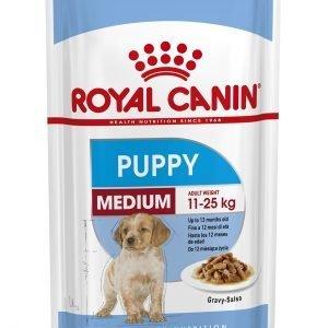 ROYAL CANIN? Medium Puppy in Gravy Wet Food