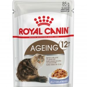 ROYAL CANIN Ageing 12+ Senior In Jelly Wet Cat Food