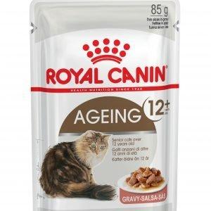 ROYAL CANIN Ageing 12+ Senior In Gravy Wet Cat Food