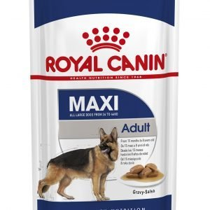 ROYAL CANIN? Maxi Adult in Gravy Wet Dog Food