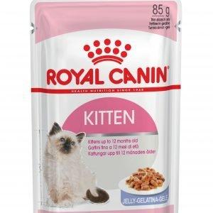 ROYAL CANIN? Kitten In Jelly Wet Food